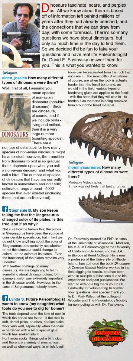 Ask dinosuar questions.